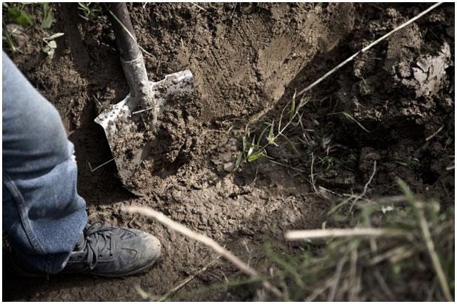 Закопал. Мужчина с лопатой