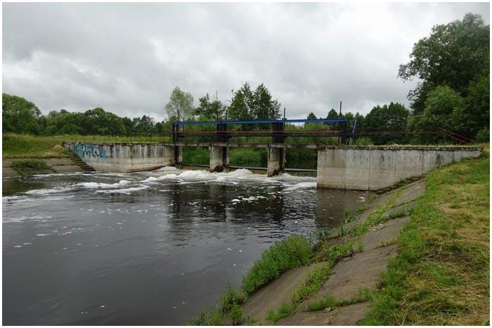 Замор на реке Лесная 2016-й год