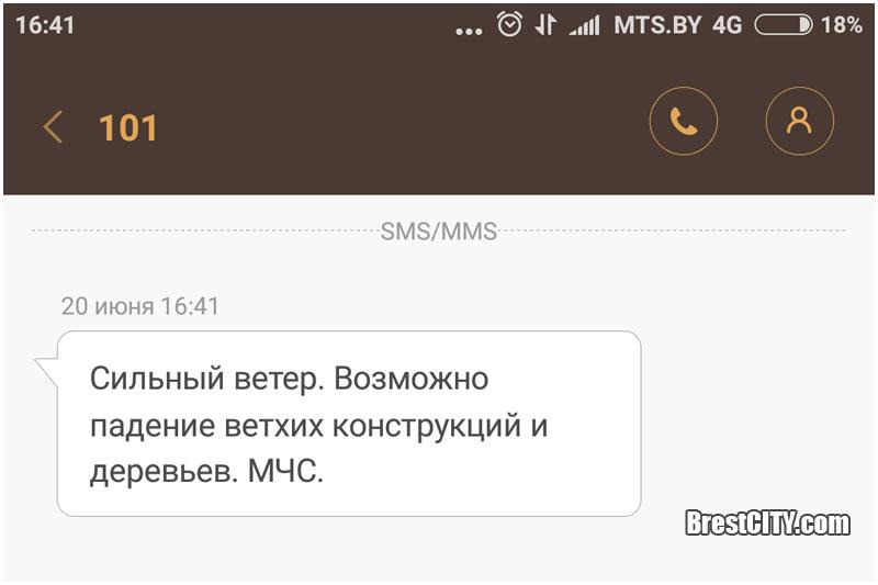 МЧС рассылает СМС с предупреждением о сильном ветре