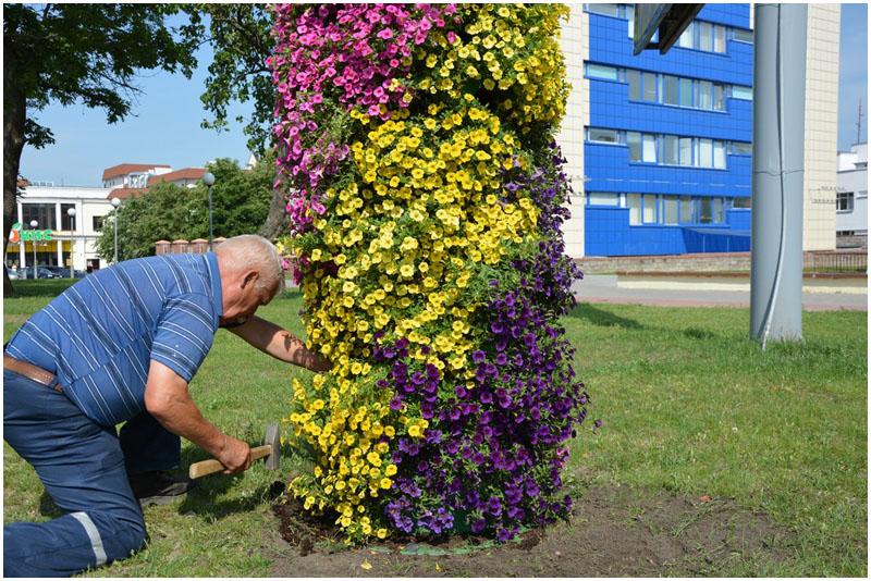 Новые цветочные композиции в Бресте