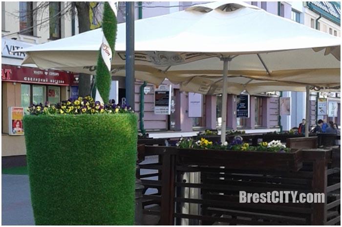 Цветочный конкурс в Бресте