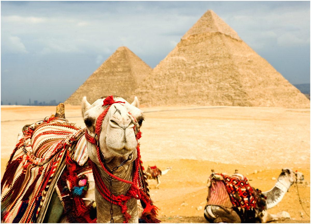 Египет 2018