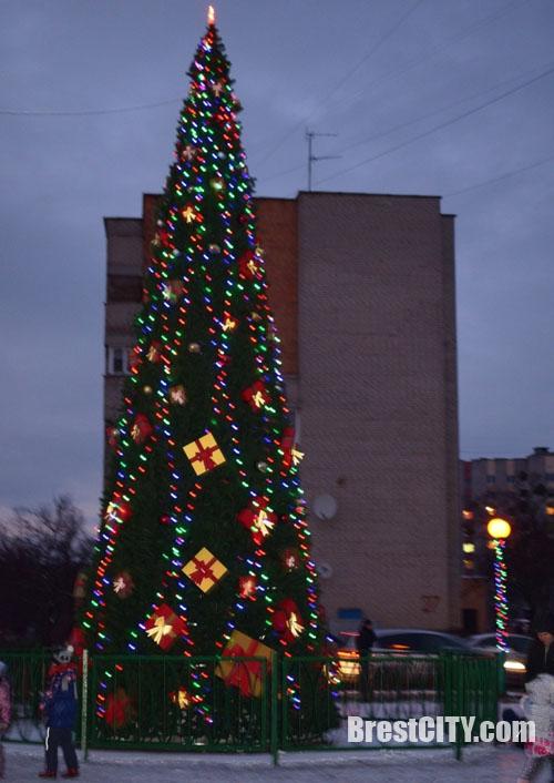 Новогодняя елка на Речице в Бресте