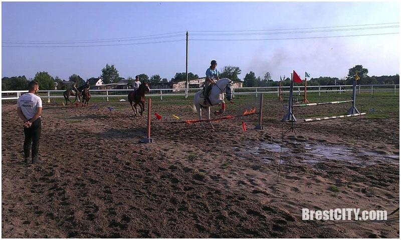 Экскурсия на конную ферму