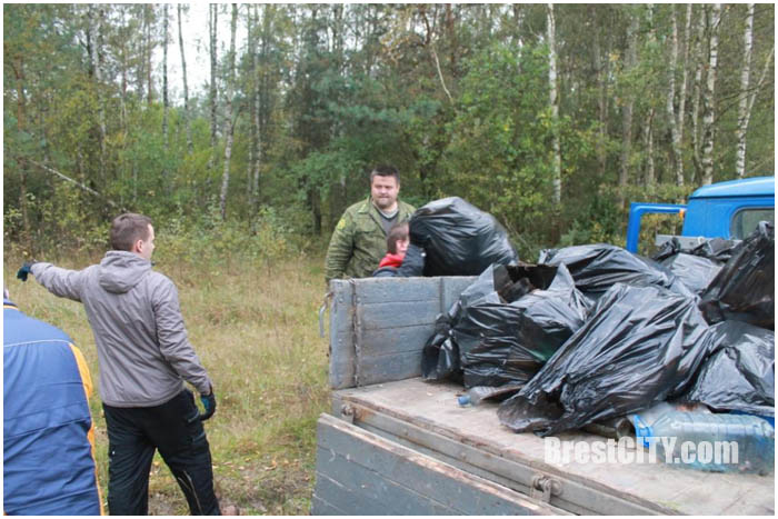 Уборка леса
