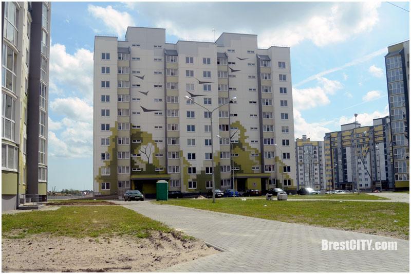 Последнее лето чаек. Микрорайон Лагуна. Брест. Фото BrestCITY.com