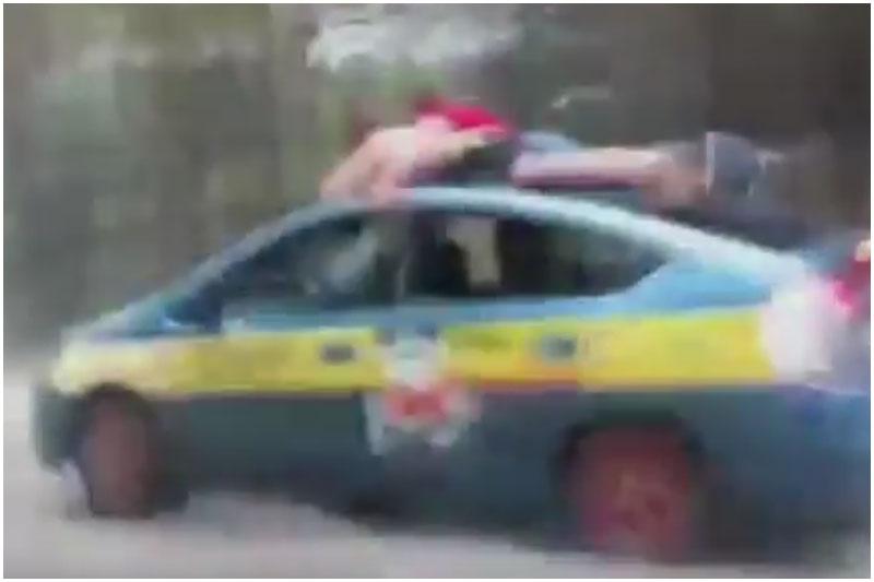 Прокатились на крыше такси: машина снесла дерево и вылетела с дороги
