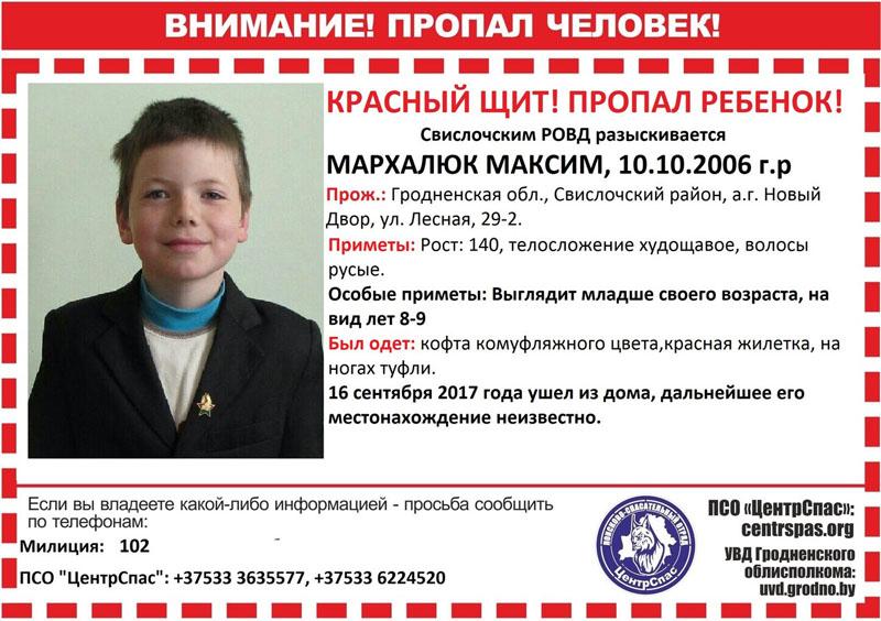 Пропавшего в Беловежской пуще мальчика ищут уже шестые сутки