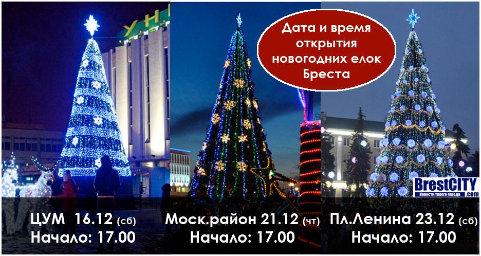 Когда и во сколько будут открывать городские новогодние елки в Бресте
