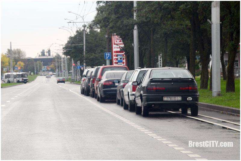 Велополоса на проезжей части в Бресте