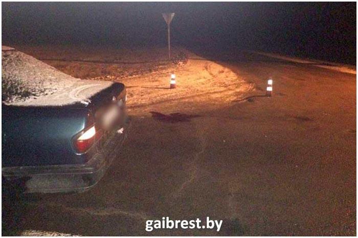 3 января 2017 в Пинском районе насмерть сбили пенсионерку