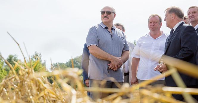 Визит Президента в Брестскую область