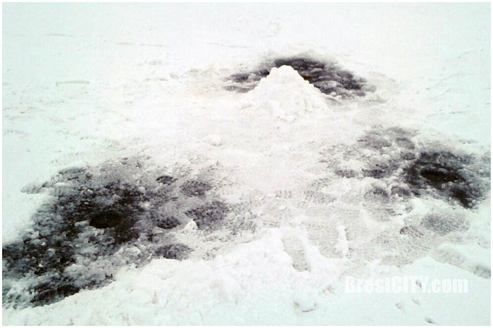 Акция БРСМ за безопасный лед