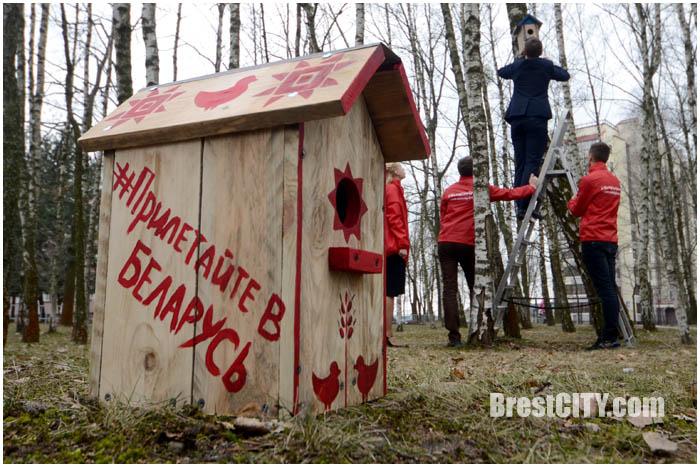 Скворечники с хэштегом Прилетайте в Беларусь в Бресте. Фото BrestCITY.com