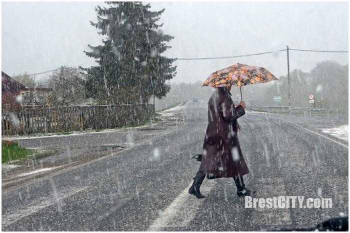 Снег и град в Бресте