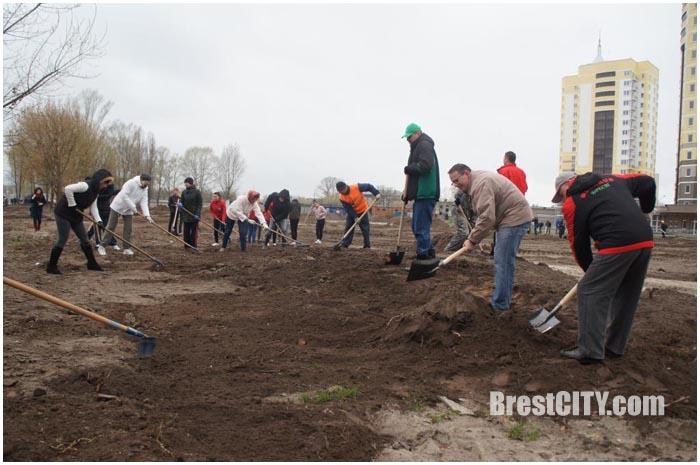 Субботник в Ленинском районе Бреста 8 апреля 2017