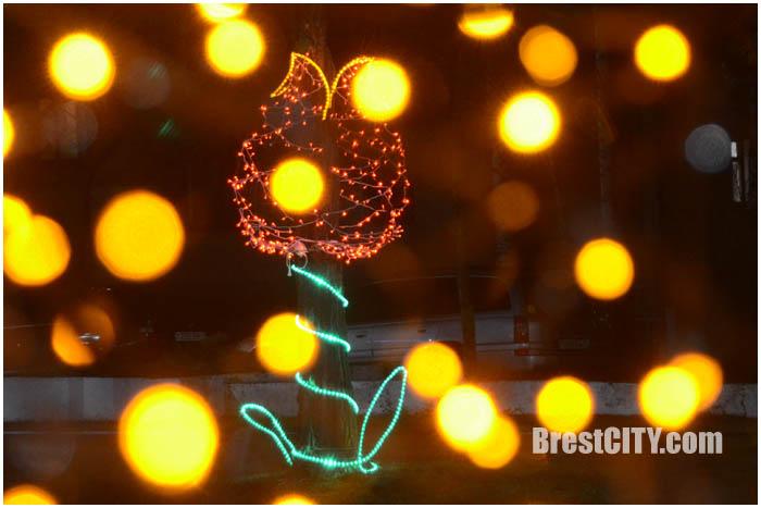 Аллея тюльпанов на проспекте Машерова в Бресте. Фото BrestCITY.com