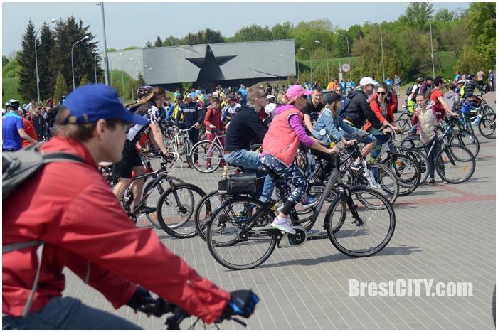 Велофестиваль Без Мотора в Бресте. Фото BrestCITY.com