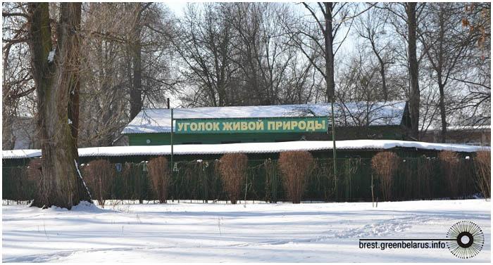 Зоопарк в брестском городском парке культуры и отдыха