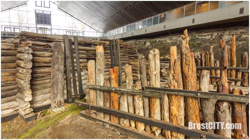 Путешествие в древнее Берестье: виртуальный 3D тур по музею