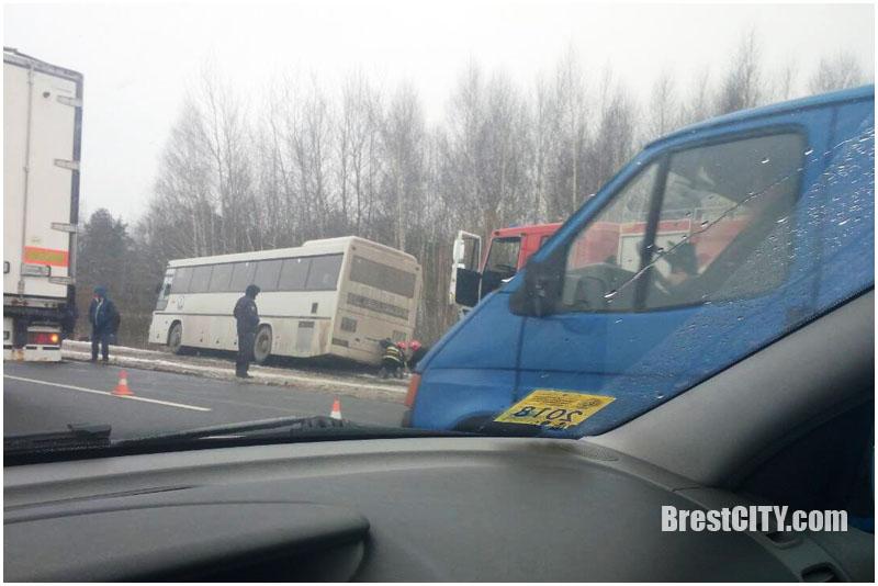 На ул.Радужная в Бресте междугородний автобус врезался в столб