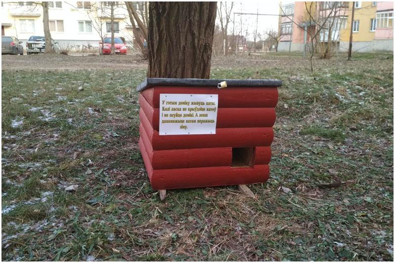 Теплые домики для бездомных котов установили в Кобрине
