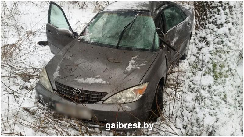 Ехал из Высокого в Брест: водитель Toyota врезался в дерево и погиб
