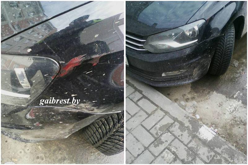В Жабинке детеныш оленя врезался в автомобиль