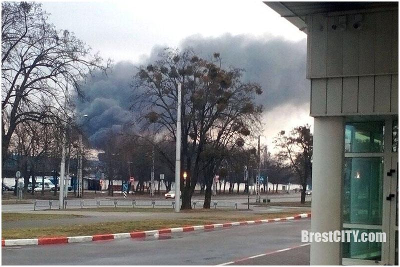 Видеофакт: в Бресте на ул.Я.Купалы горела фура