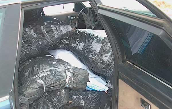 """Два """"мясных"""" автомобиля задержали пограничники в Малоритском районе"""