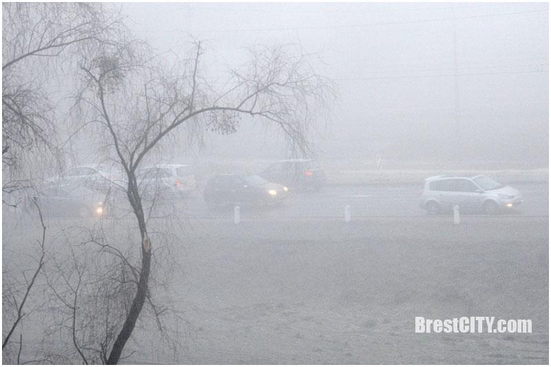 Утренний январский Брест в густом тумане