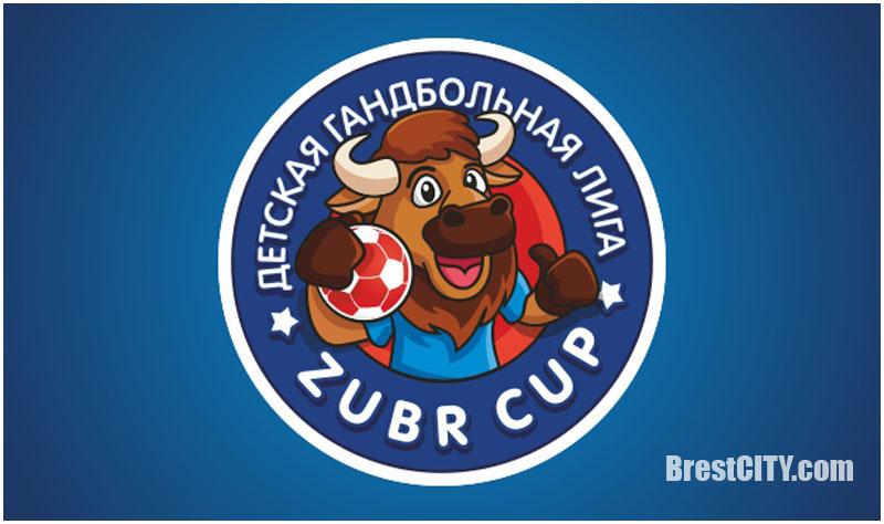 В Бресте пройдут игры детской гандбольной лиги «Zubr Cup». Расписание