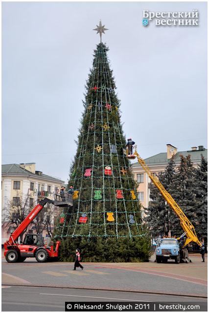 Уставнока елки на площади Ленина
