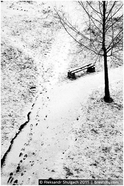 В Бресте пошел снег