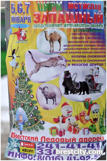 Цирк Мстислава Запашного в Бресте