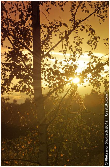 Осень. Закат солнца