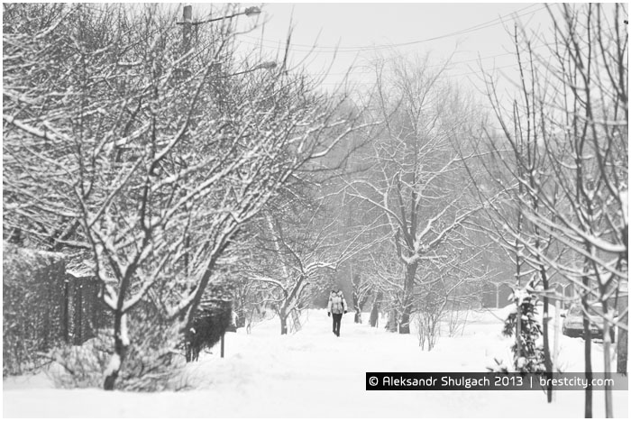 Снегопады в Бресте. Циклон Бирк