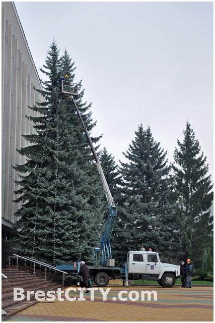 Гирлянда на елке возле здания горисполкома в Бресте