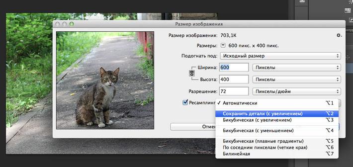 Adobe Photoshop CC. Новые функции и возможности
