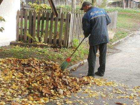 Дворник подметает листья