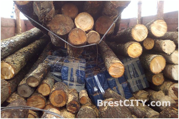 Контрабанда в лесоматериалах через границу