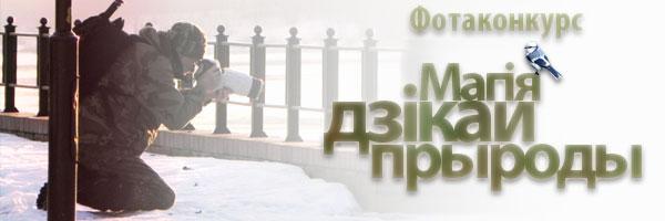 """Фотоконкурс """"Магия дикой природы 2013"""""""