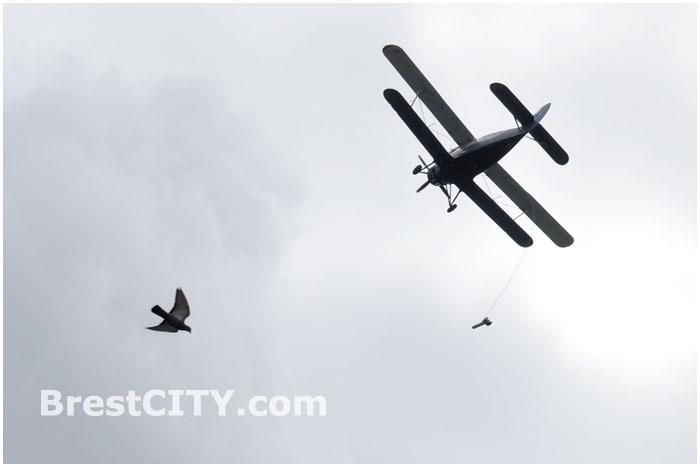 Самолет в Бресте делает замеры воздуха