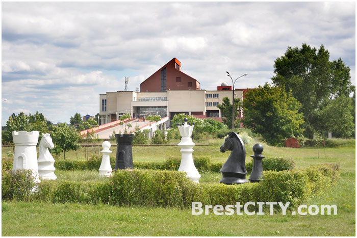 Шахматные фигуры около ЦМТ в Бресте