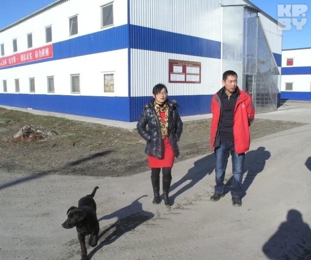 Китайцы, что строят Березовскую ГРЭС, по окончании строительства уедут домой.