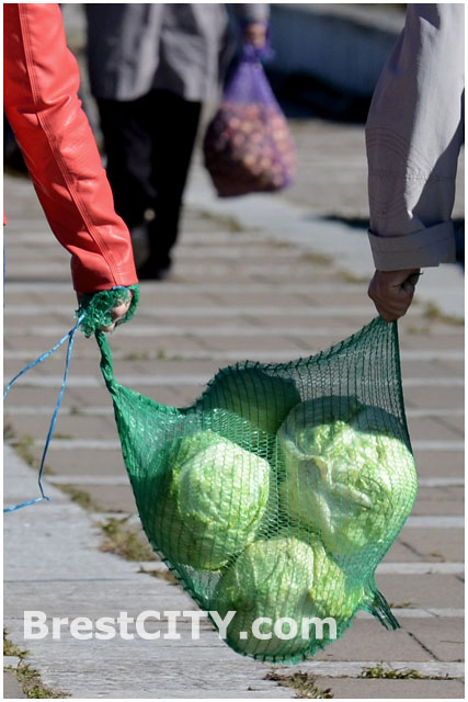 Осенние ярмарки-базары в Бресте