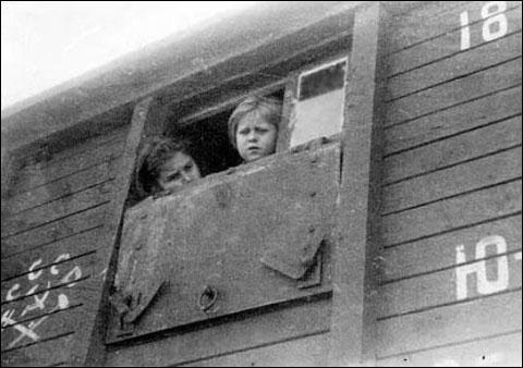 К маю 1940 года из этих людей, погруженных в лютый мороз в вагоны для скота, умерло более 11 500, в основном детей и стариков