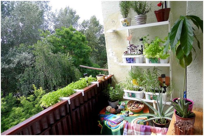 Самый красивый балкон - в Бресте