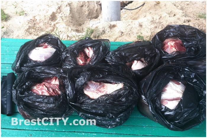 Житель Каменца пытался провезти свинину в топливном баке мерседеса