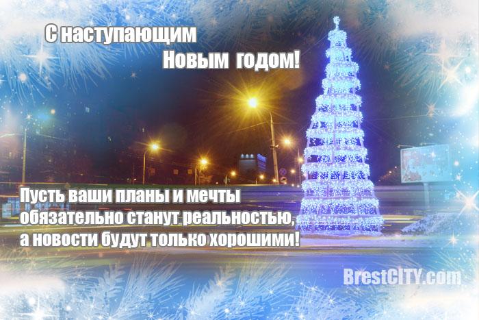 Поздравление с Новым 2015 годом. Елка